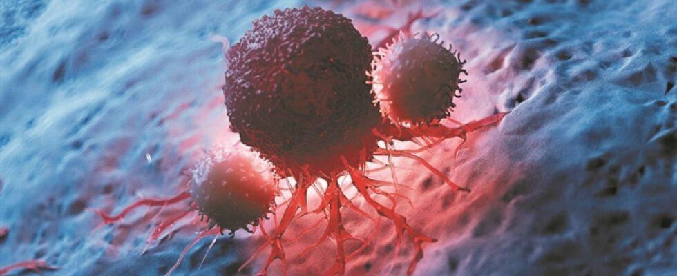 Οι ορμόνες που υποτροπιάζουν τον καρκίνο