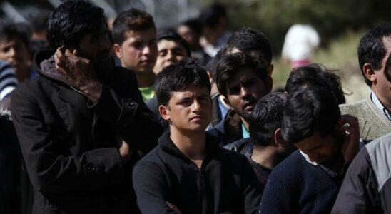 Ουρά από μετανάστες έξω από ΜΚΟ